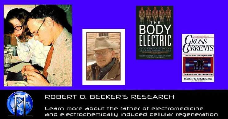 ROBERT O BECKER BODY ELECTRIC CROSS CURRENTS